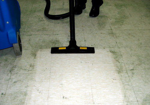 Greasy Floor Cleaning with Steam Vacuum machine